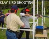 Clay_bird_shooting_5.jpg